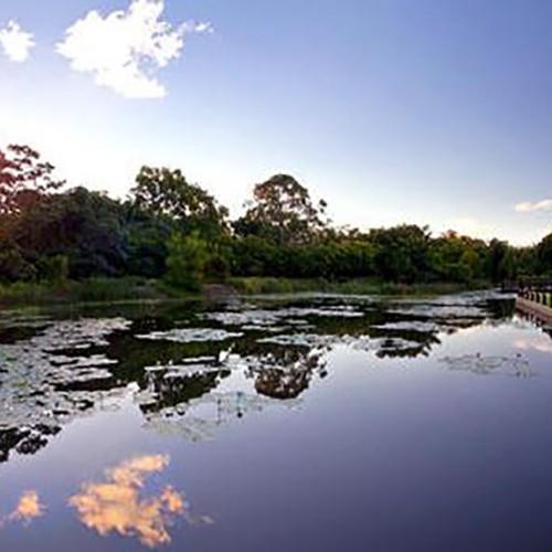 Elysium Noosa Lake